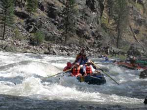 Wilderness Whitewater Rafting Trips