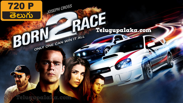 Born to Race (2011) Telugu Dubbed Movie