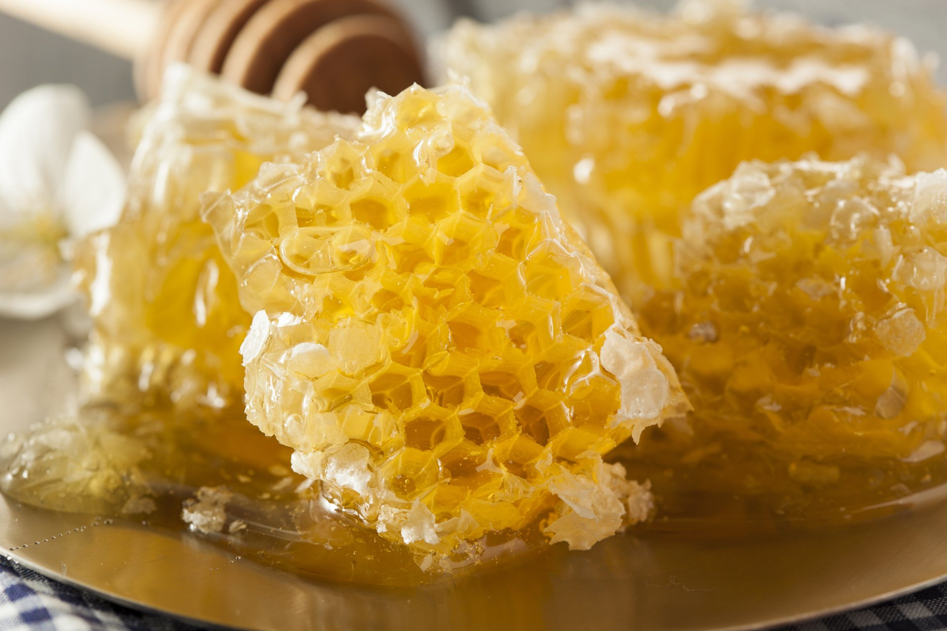 Honey, local, allergy, asthma, natural medicine, botanical, naturopathic, edina, mn, woodbury