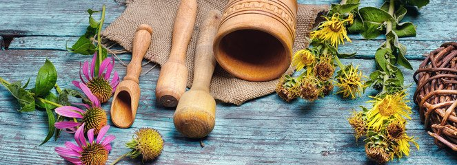 healing with botanicals