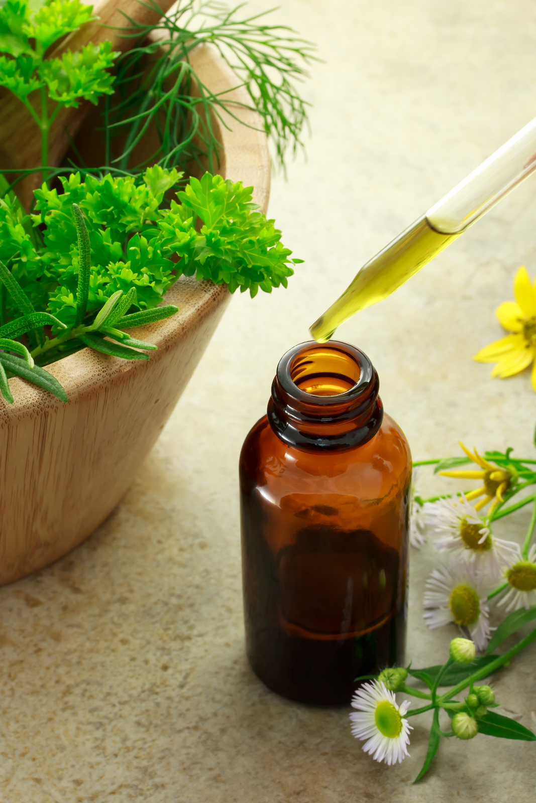 Botanical, herbs, allergies, asthma, natural treatments