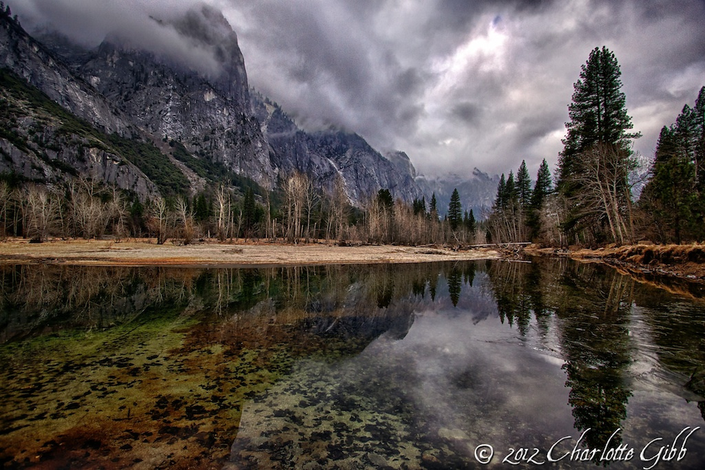 Merced River Bottom