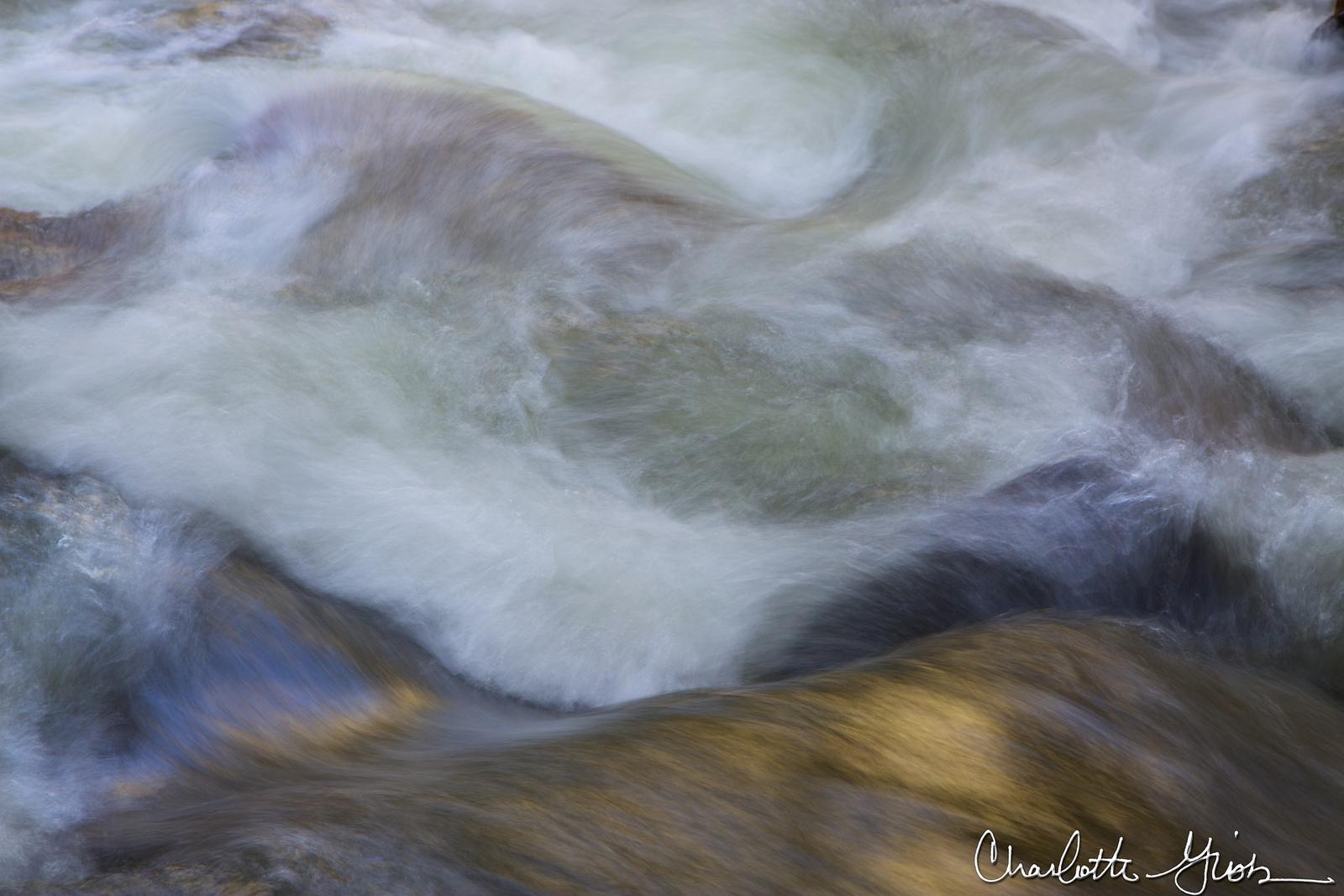 Rapids Detail