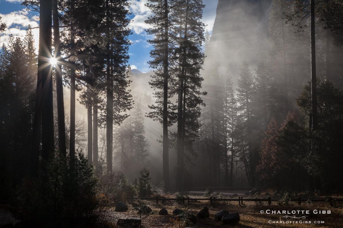 God Beams, Yosemite, February 2014