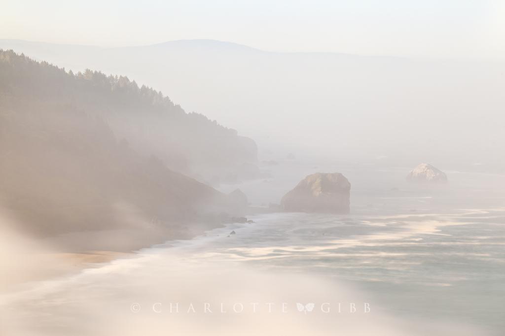 Sea Stacks in the Fog, North Coast, California, June 2014