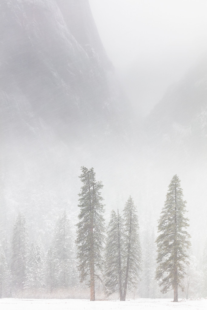 """Winter Arrives"", January 31, 2016, Yosemite"
