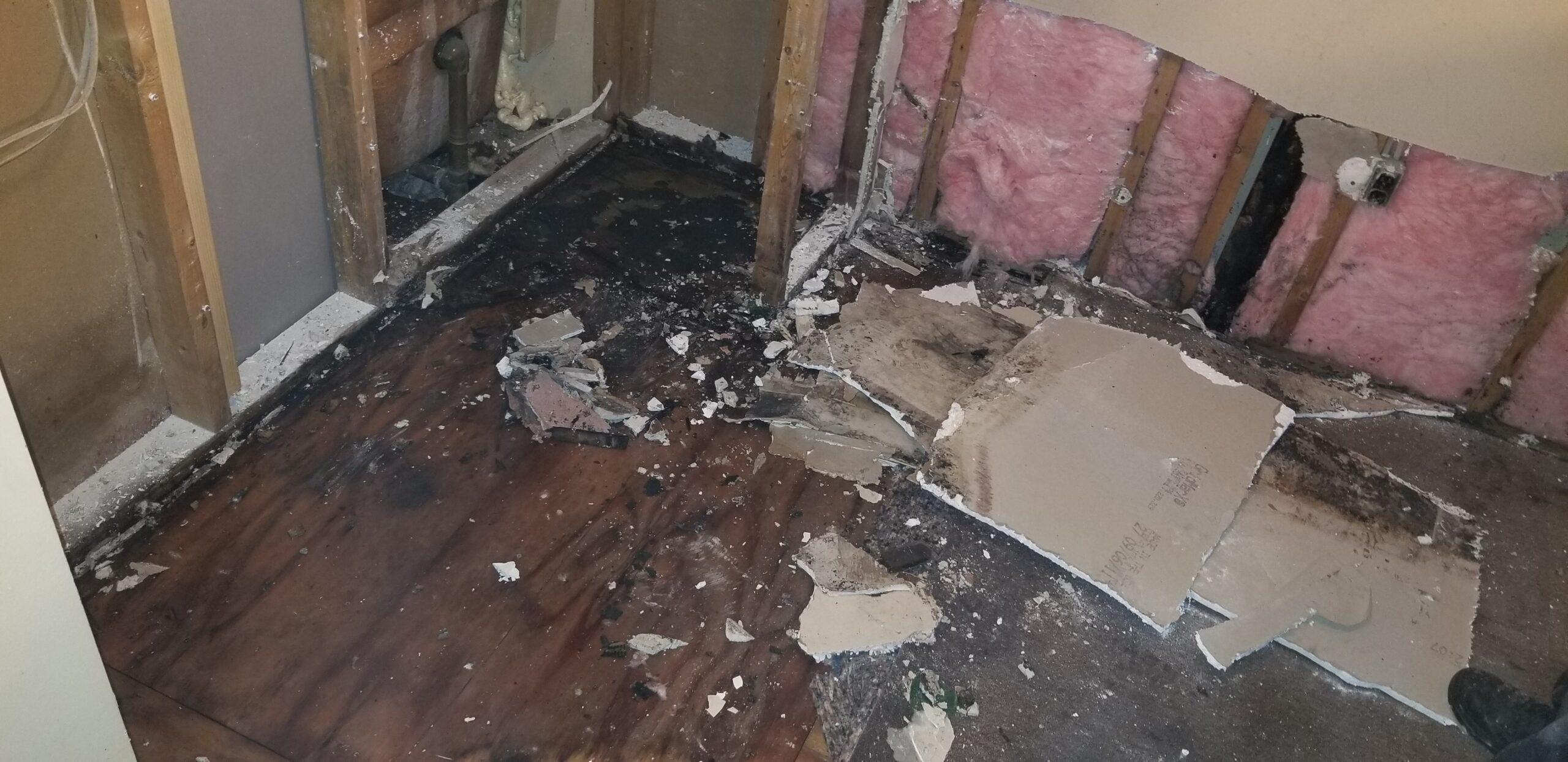 wet moldy floor