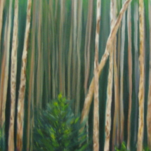 15x30 Oil on canvas