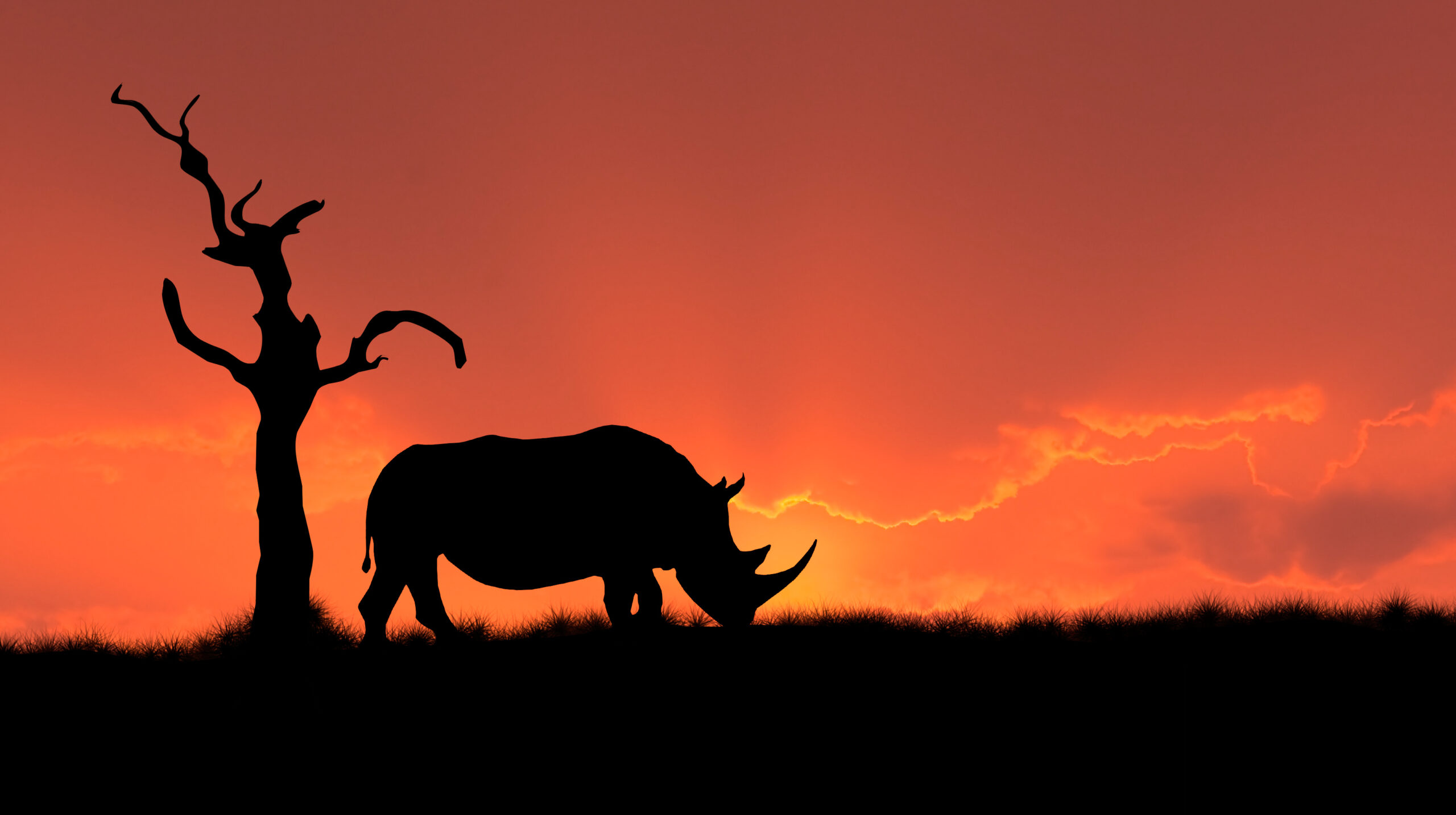 Ending Wildlife Markets and Consumption