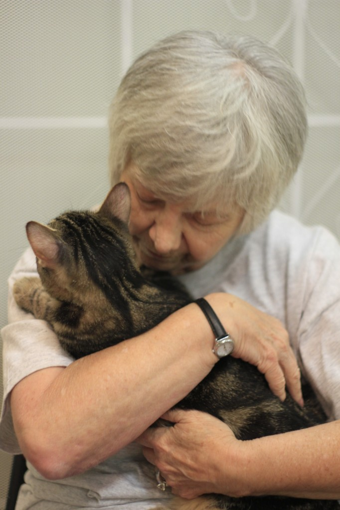 Debbie Regal cuddles a rescued cat at the animal rescue home, Petopia.  Photo: Monica Salazar
