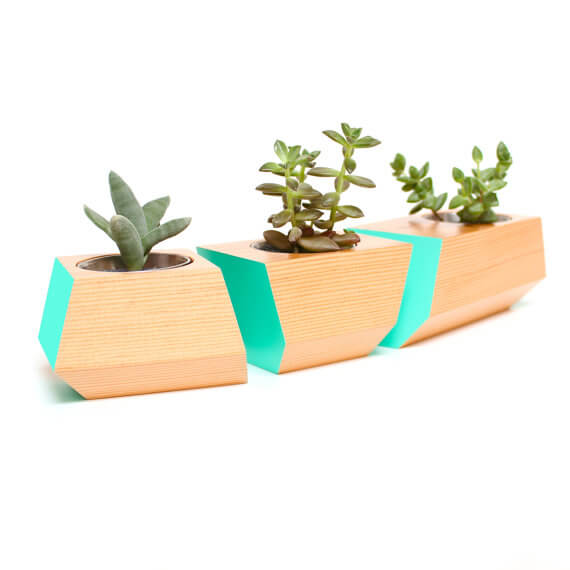The Most Unique and Fun Pots for Plants in Your Home
