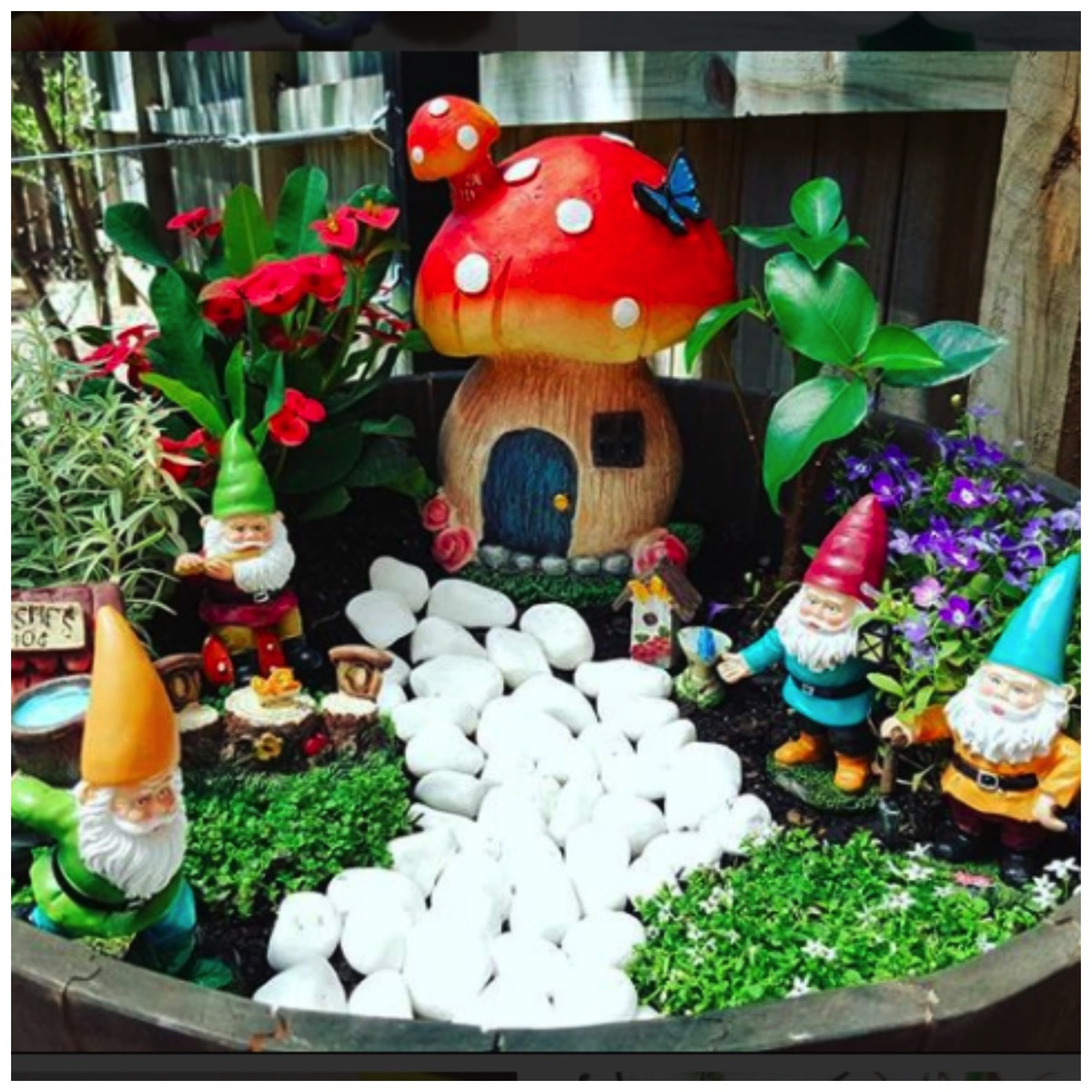 Colorful gnome home garden