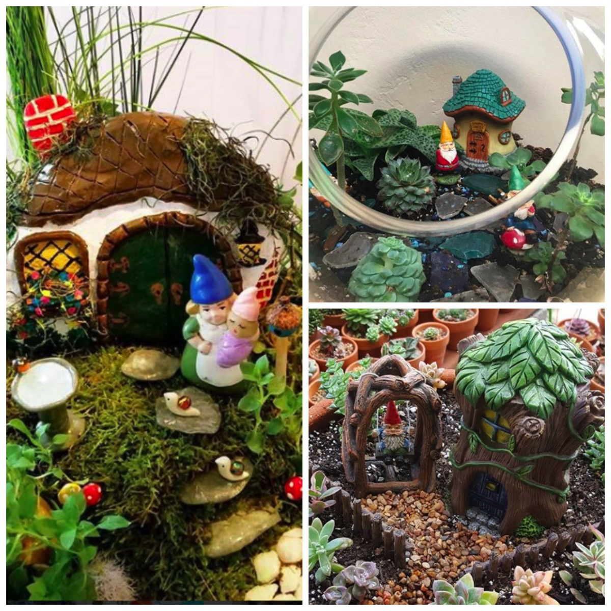 Gnome garden ideas