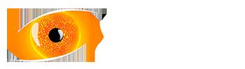 SITE service logo