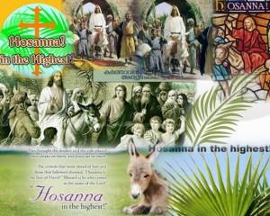 hosanna Collage (640x512)