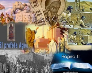 haggai Collage (640x512)