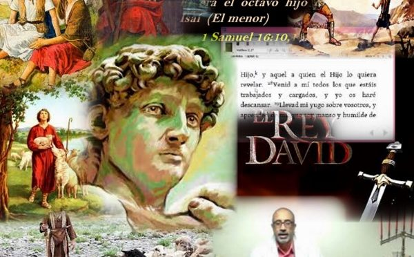 Who is David?
