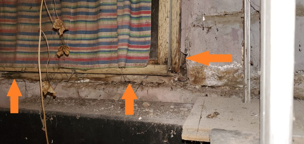 moisture damage around basement window