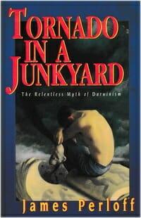 Tornado Junkyard Perloff creation