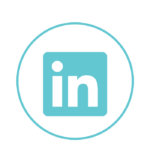 minaya linkedIn icons