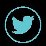 minaya twitter icon