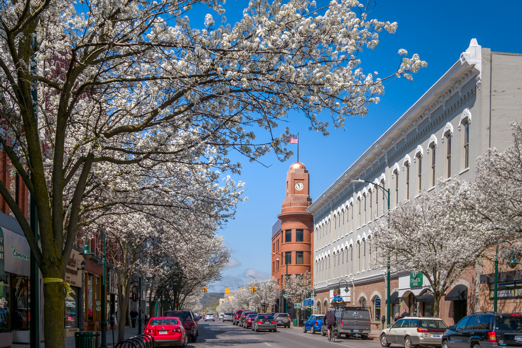 Looking west along Front Street, Traverse City, springtime with flowering trees