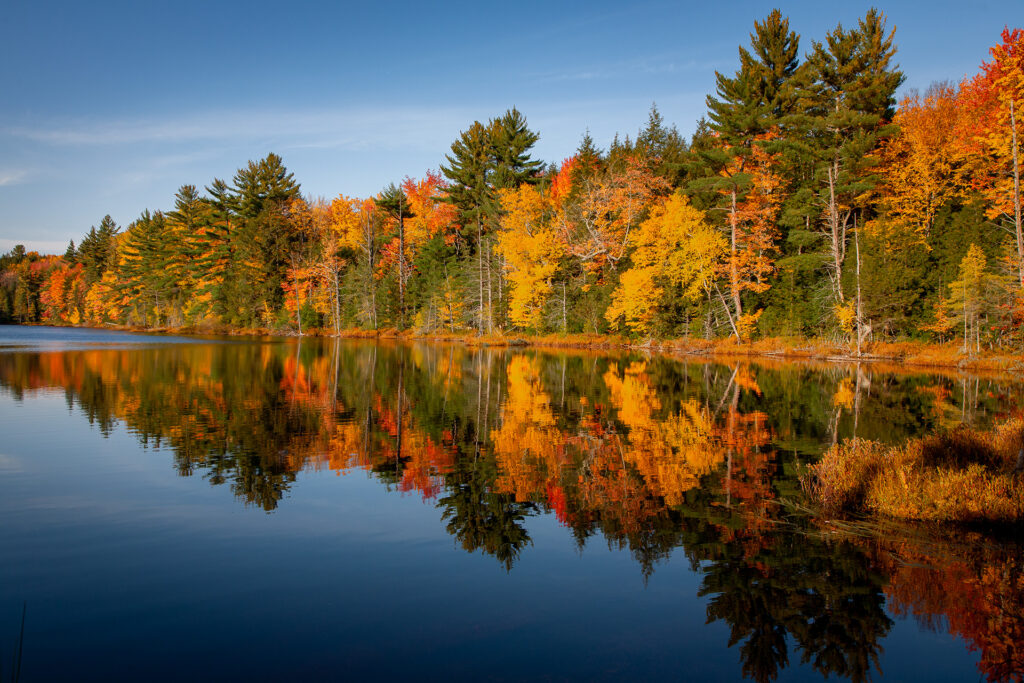 Brilliant Fall colors reflected in a secluded small lake in Northern Michigan.