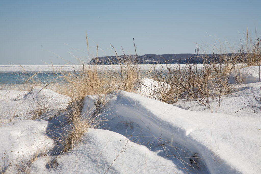 A winter view of beach grass and snow across the largely frozen Good Harbor Bay with Pyramid Point in the distance.