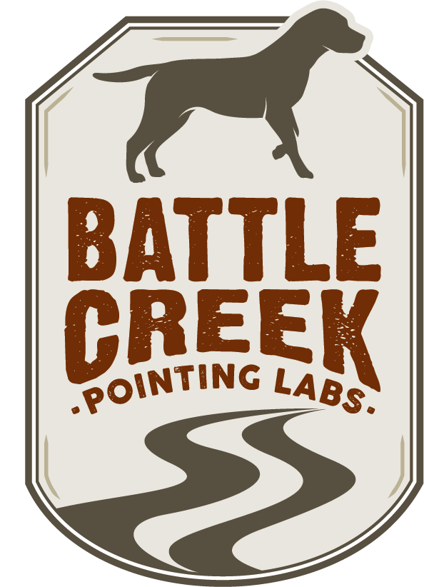Battle Creek Pointing Labs