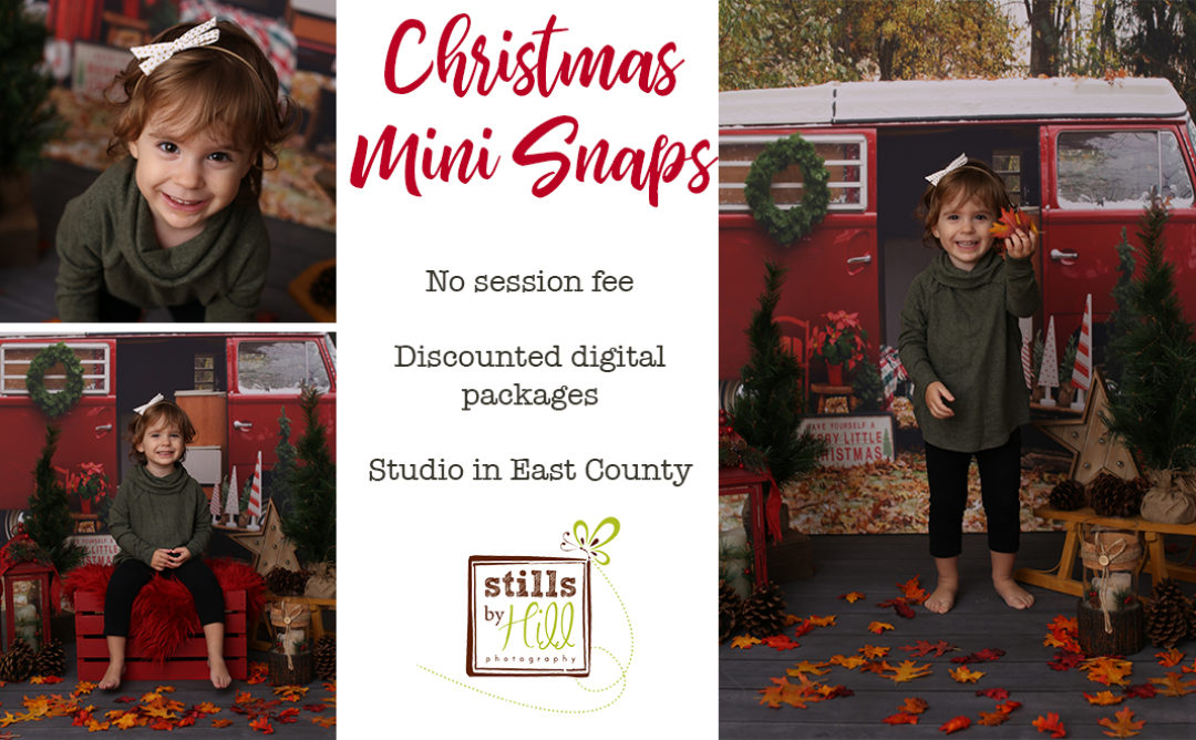 2019 Christmas Mini Snaps™- San Diego Photographer