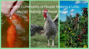 Join the Community of People Making a Little Money Making the Planet Better