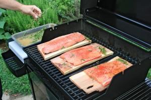 salmon-fish-wood-625978-h