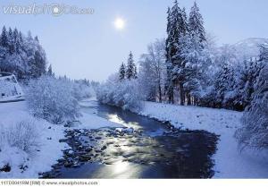 Winter scene with moon