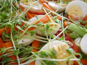 salad-386792_1280