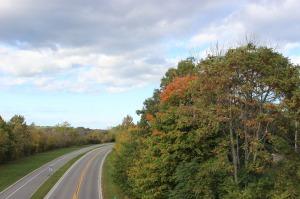 road-581736_1280