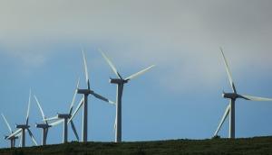 wind-farm-435790_1280