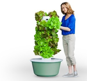 aquaponic tower garden