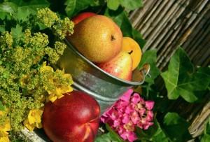 fruits-850491_1280
