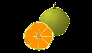 ugli-fruit-789211_1280