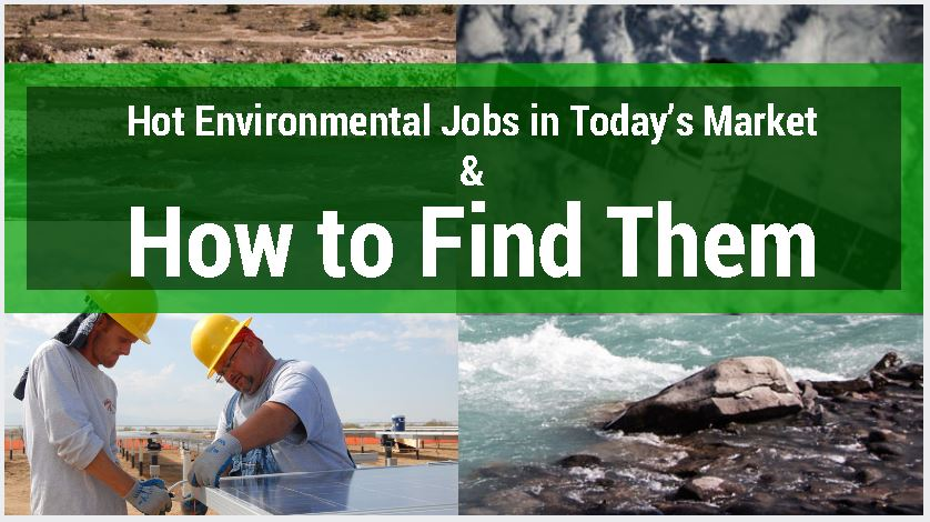 environmental professionals