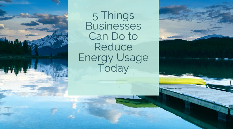 5 Things Businesses Can Do to Reduce Energy Usage Today