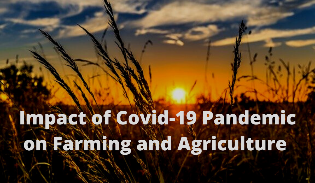 Impact of COVID-19 Pandemic on Farming and Agriculture