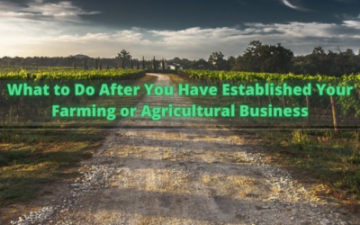 What to Do After You Have Established Your Farming or Agricultural Business