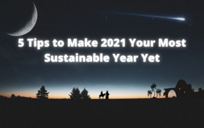 5 Tips to Make 2021 Your Most Sustainable Year Yet