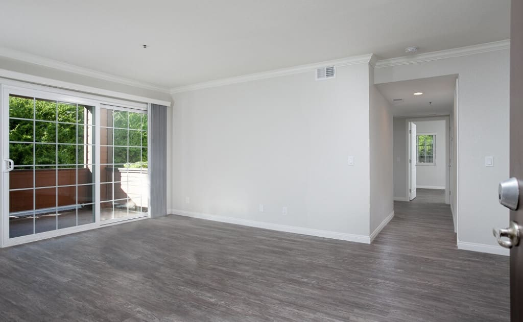 Urban Wood Floors & Open Layouts entering into the apartment