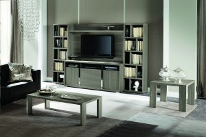Tivoli Entertainment Center with Curio