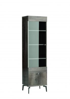 Vega Bookcase with Glass Door