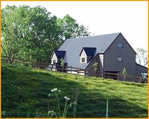 Spring Branch Farm – Haysi