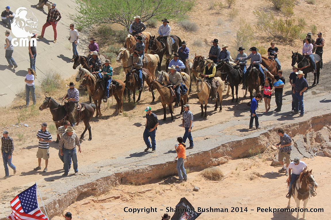 Image result for bundy ranch trials