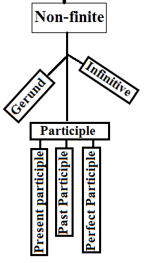 Participle has three sub participles, Present, past, and perfect participle.